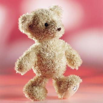 Schaffer Plüschtier Teddybär LUCA beige 26 cm